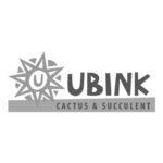 01_ubink